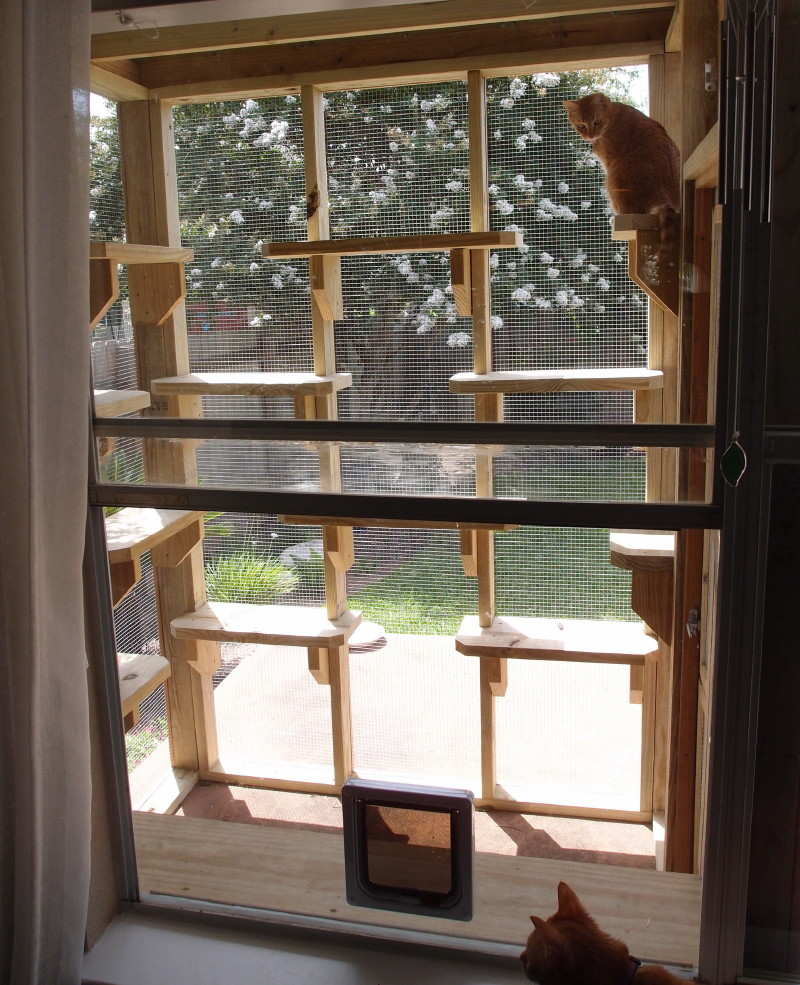 outdoor best insulated sliding of petsmart for cat doors dog window glass exterior door unique
