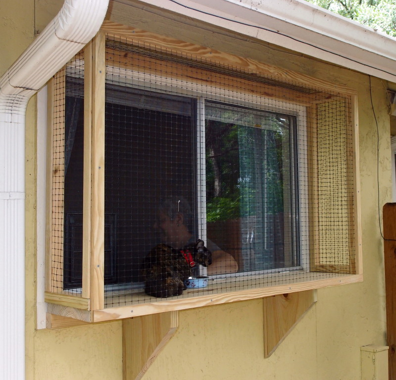 This Enclosure Sits On A Shelf Outside A Small Bathroom Window. The Window  Screen Was Replaced With A Plexiglass Panel That Allows A Cat Door To Be  Mounted ...